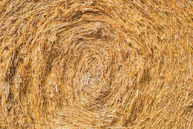 Текстура скошенного сена