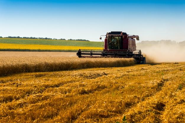 Красный комбайн для уборки урожая пшеницы на поле