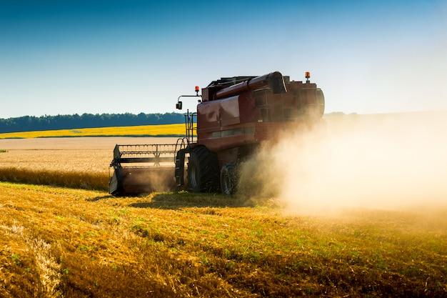 Красный комбайн на пшеничном поле, зеленый комбайн на полевых культурах