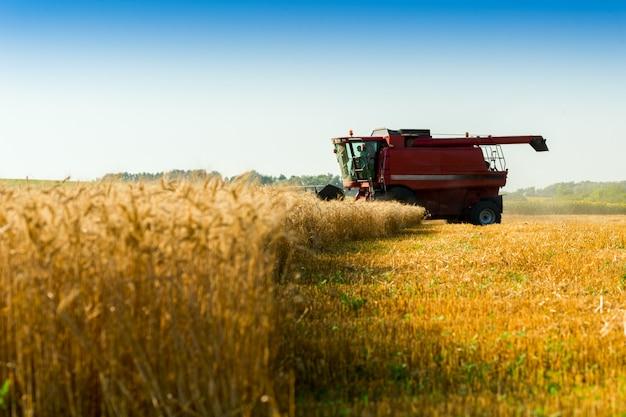 Красный комбайн для сбора урожая пшеницы