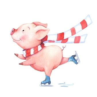 Акварельная свинья в шарфе на коньках.