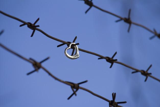 禁じられた愛と刑務所の概念の愛