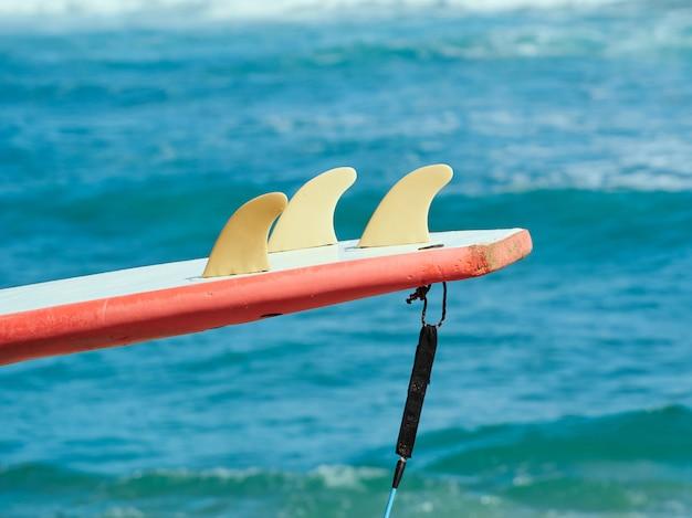 プラスチックフィンの初心者向けサーフボード