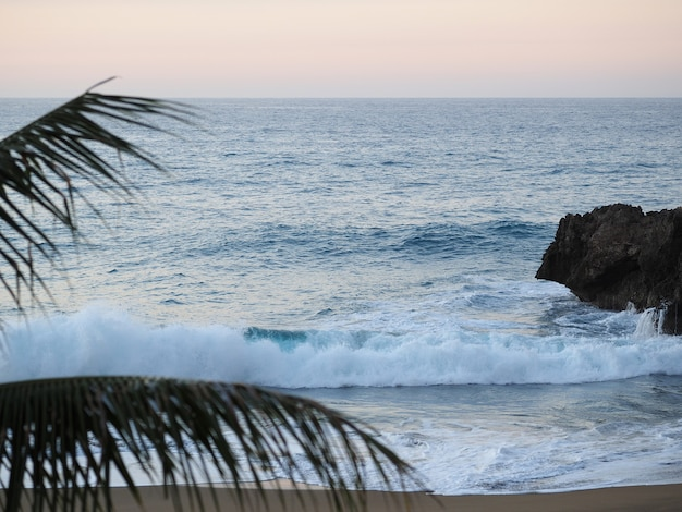 Доминиканская республика, пляж в сумерках, волны и пальмовые ветви. заход солнца. выборочный фокус. мягкий фокус.