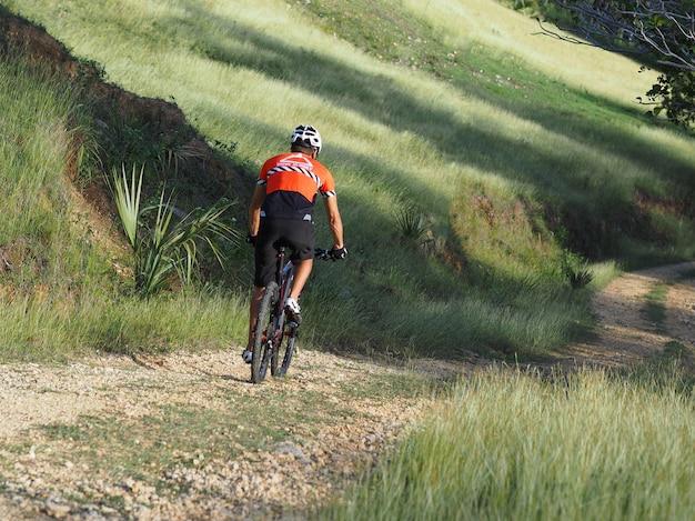 男性アスリートマウンテンバイクは、田舎道に沿って自転車に乗る。朝は晴れ。背面図。