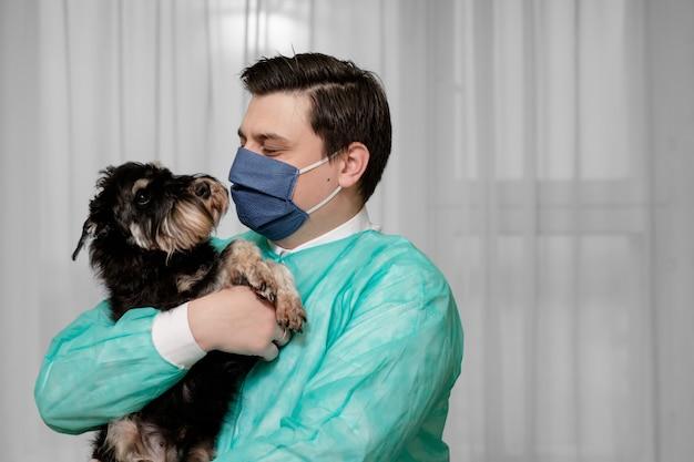 不衛生な状態で、医師はコロナウイルスに感染した犬を手に持っています、