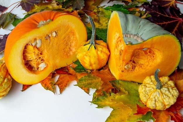 秋の収穫。ミニ装飾カボチャと半分の大きな。