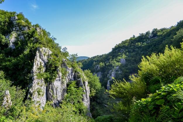 Живописный вид на скалу. гора в национальном парке плитвицкие озера, хорватия. европа. лучшие направления европы и знаменитые достопримечательности. волшебный пейзаж.