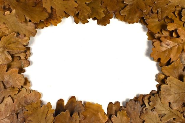白い背景の上の秋の葉のフレーム