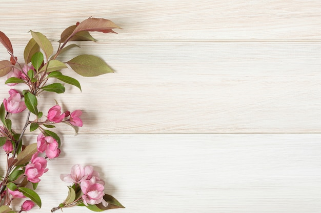 木製のテーブルの開花のリンゴの木の枝。フラットレイ