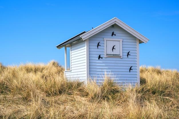 スウェーデンのスコーネ、ファルステルボのスカノールビーチにキャンディ色のビーチ小屋。スウェーデンの観光コンセプト