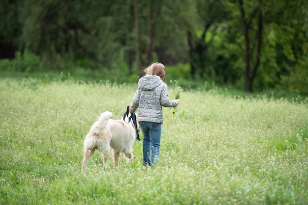 Маленькая девочка с собакой на цветущем поле