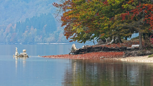 山の湖の自然の風景。美しい青い空の反射
