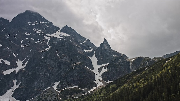Снег на вершине горы в национальном парке джаспер, альберта, калифорния