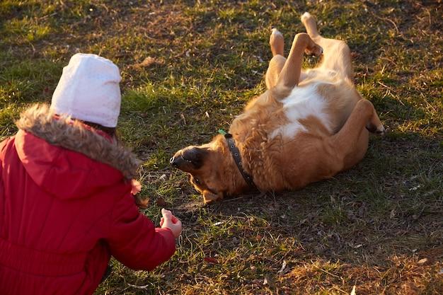 裏庭の芝生の上の犬と遊ぶ赤いジャケットの少女
