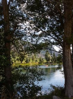 Озеро с горами и лесом в солнечный день