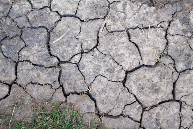 Треснутая высушенная текстура земли, конец вверх. сухой, эрозия, экология проблемы концепции.