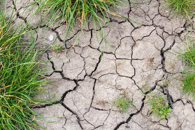 Треснувшая текстура сухой земли