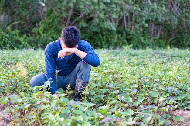 Обескураженный фермер кладет руку на лоб на поле сельского хозяйства