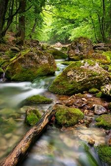 山の深い川