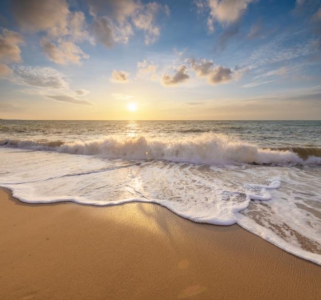 夏の海のビーチ。