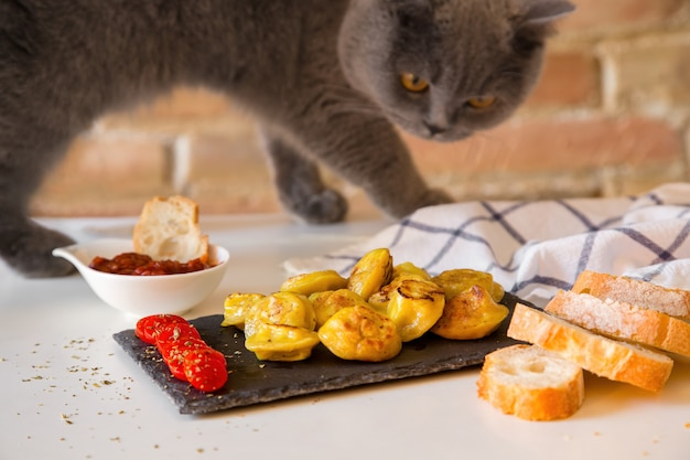 Голодный кот нюхает и хочет съесть пельмени, приготовленные для фотосессии.