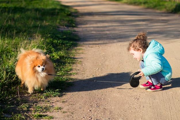 紐でポメラニアンスピッツ犬と歩く少女。オーナー、子供、ふわふわのかわいい子犬が屋外にいる子供。子供とペット、動物を一緒に。