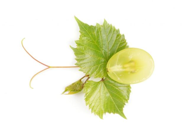 Зеленый виноград с листьями на белом фоне