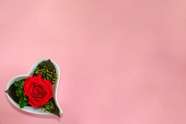 Цветочная красная роза в форме сердца в горшке на розовом фоне, вид сверху