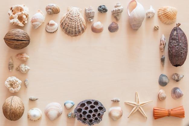 木製の背景に海の貝殻フレーム
