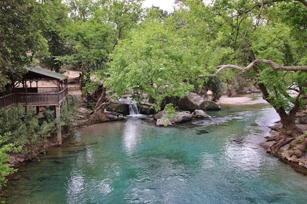 緑の渓谷の川