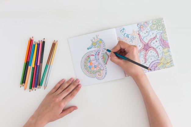 女性の手の絵画抗ストレス着色