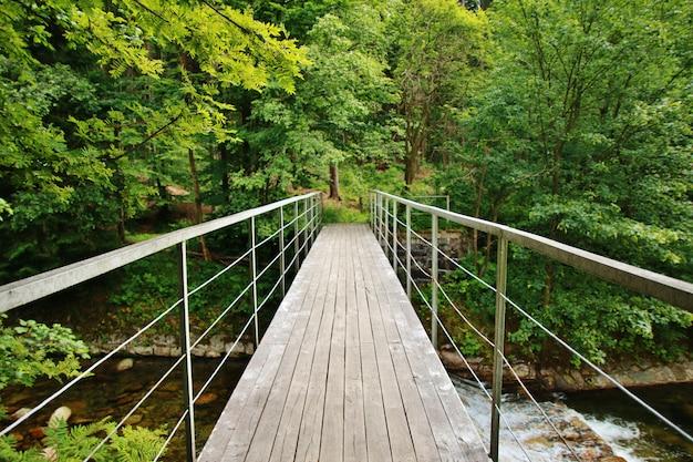 山の川に架かる木製の橋
