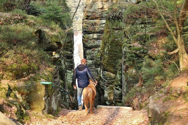 Человек и собака в парке