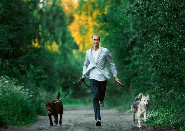 Человек с двумя собаками гуляет по солнечному лугу