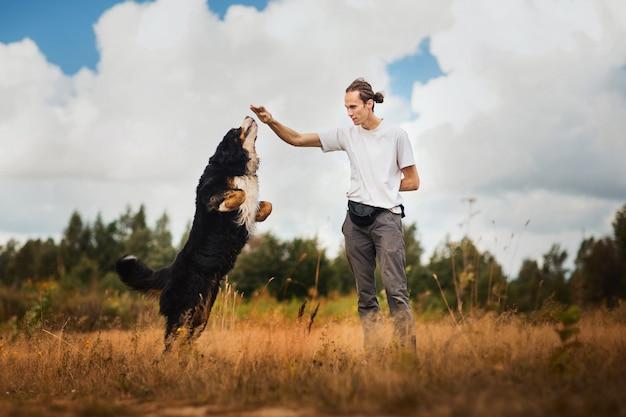 夏の畑でバーニーズマウンテンドッグと歩く若い男