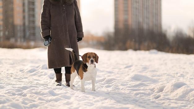Жизнерадостная женщина гуляет с собакой на лугу зимой