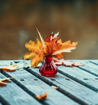 Осенняя композиция на открытом воздухе. осень.