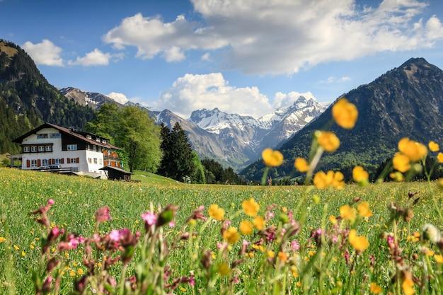 雪に覆われた山々と伝統的な家の花草原。バイエルン、アルプス、アルガウ、ドイツ。