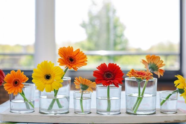 Красочные герберы в стеклянной вазе на деревянном столе в яркой современной комнате, ретро весенний дизайн в ряд