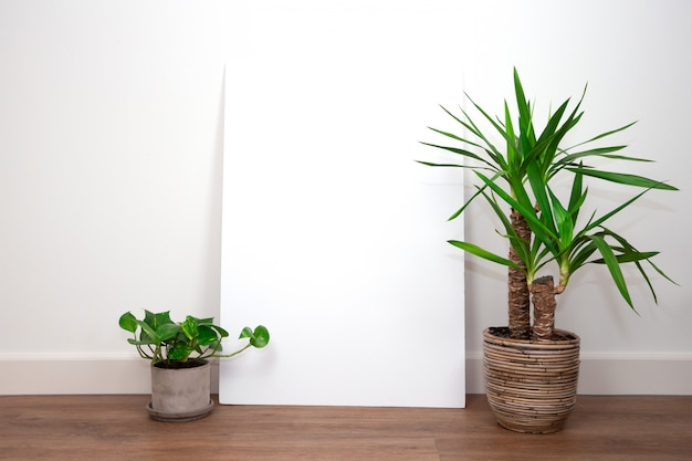 空白の空のポスターまたはテキストのフレームと白い壁に対してポリ塩化ビニールの床に緑の植物とモダンなインテリア、白い壁。レトロ