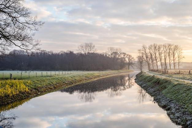 夕日に新鮮な草と幻想的な穏やかな川。オランダの朝の寒い日に美しい緑の冬の風景