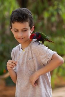 公園のイスラエルで鳥たちに食べ物をあげる子供たち