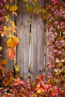 秋の抽象的なフレーム。フェンスと葉