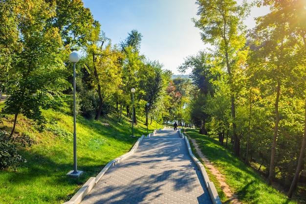 キシナウの階段と古い緑豊かな公園。モルドバ。公園のある緑の風景。