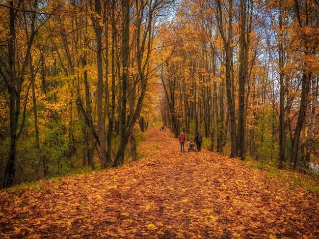 Семейная прогулка по аллее в осеннем парке.