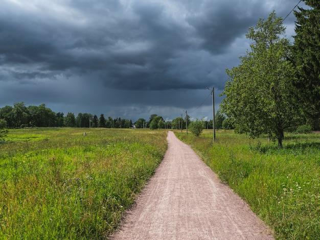 フィールドを介して田舎の夏の道