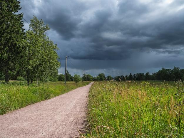 緑の野原と夏の日の暗い空の雲を通る道路
