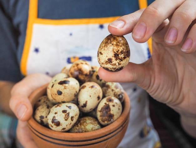 Перепелиные яйца в руках, крупным планом.