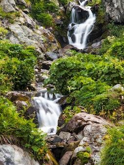 山の滝。夏の風景。野生の自然